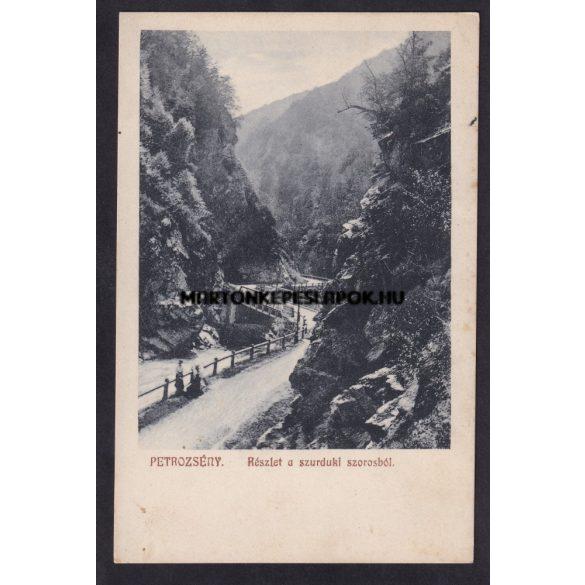 Petrozsény régi képeslapon. Részlet a szurduki szorosból. Herz Henrik kiadása. Feladva 1909.