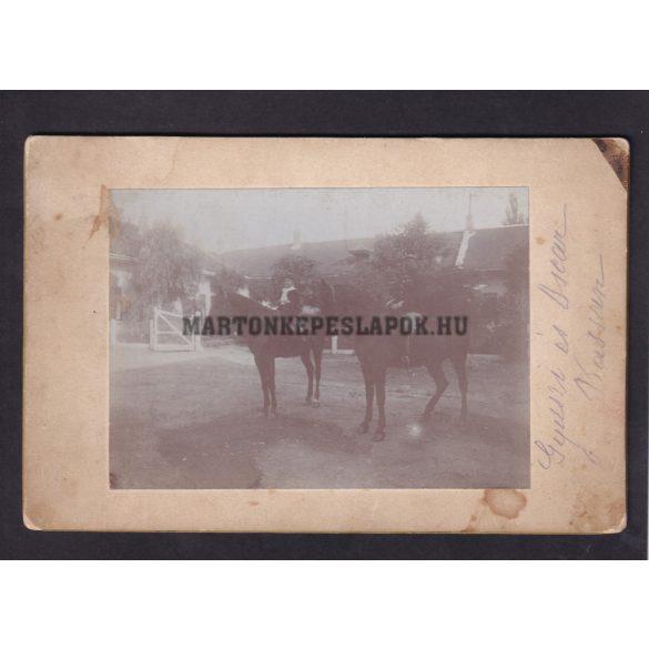 Felirat alapján Kassán készült fotó: Turcsányi Gyula és Oscar lovagol. Kartonra ragasztva