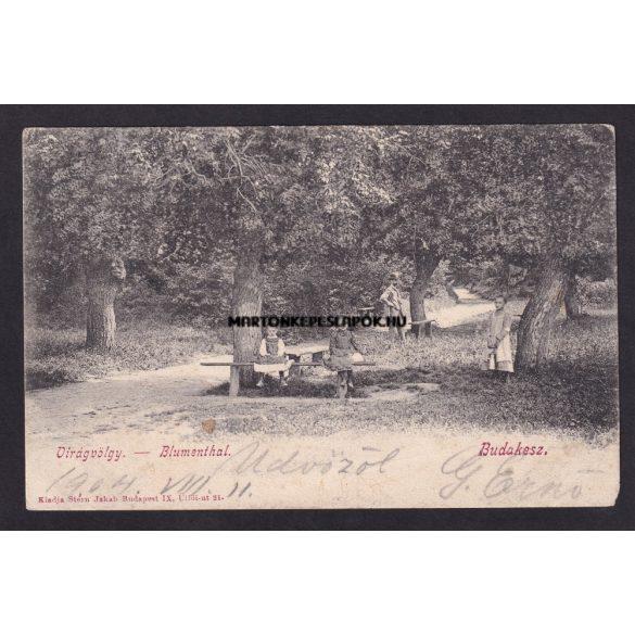 Budakeszi régi képeslapon. Virágvölgy emberekkel. Kiadja Stern Jakab Budapest IX. Üllői út 21.